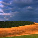 Zlatibor Landscape